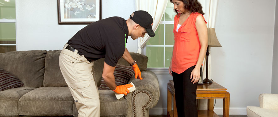 Aiken, SC carpet upholstery cleaning